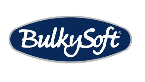 logo bulkisoft